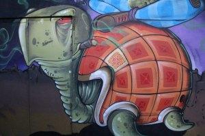 turtle experiment