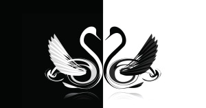 swan-love